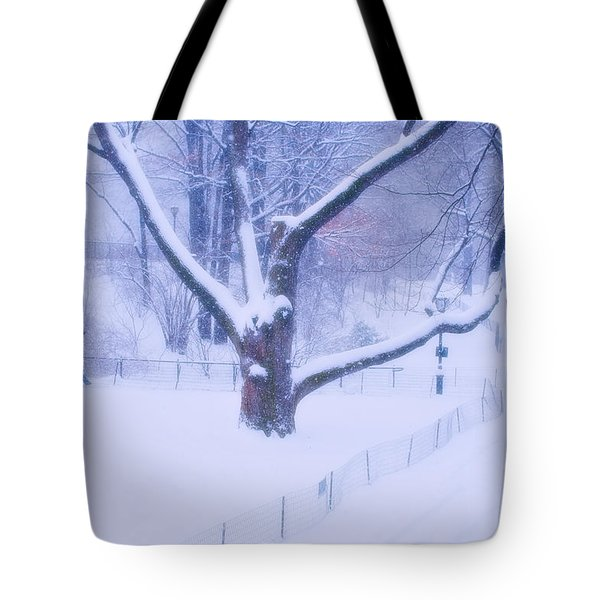 Tote Bag featuring the photograph Snow Walk Central Park by Dave Beckerman