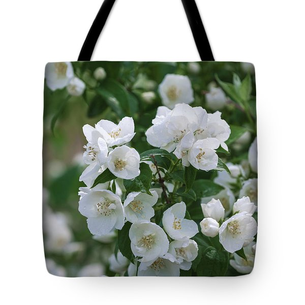 Tote Bag featuring the photograph Snow White Jubilee by Kim Hojnacki