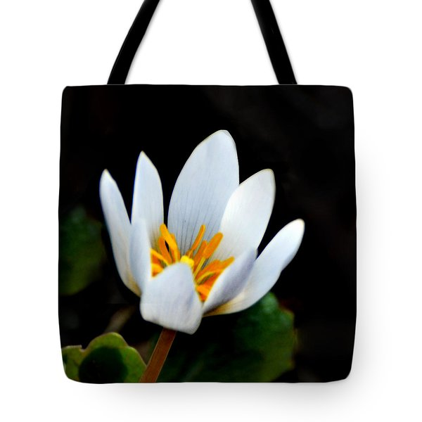Snow White Petals Tote Bag