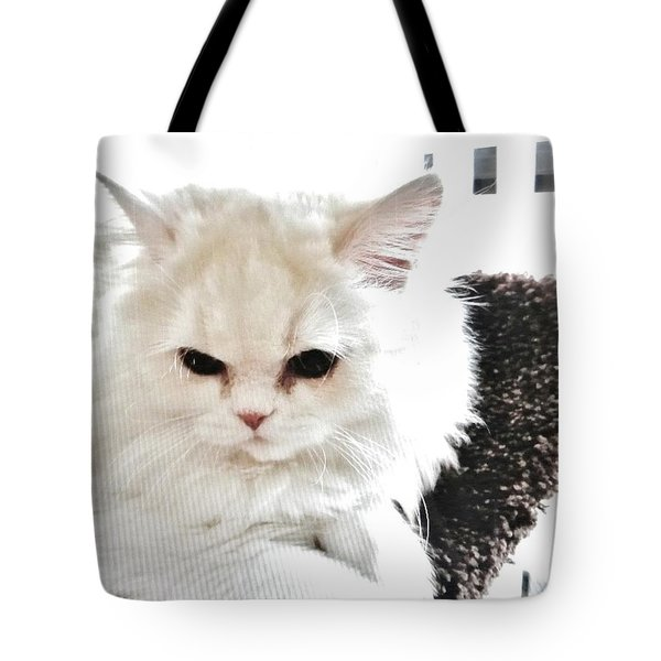 Tote Bag featuring the photograph Snowball Is 92 Year Old Widows Cat by Marsha Heiken