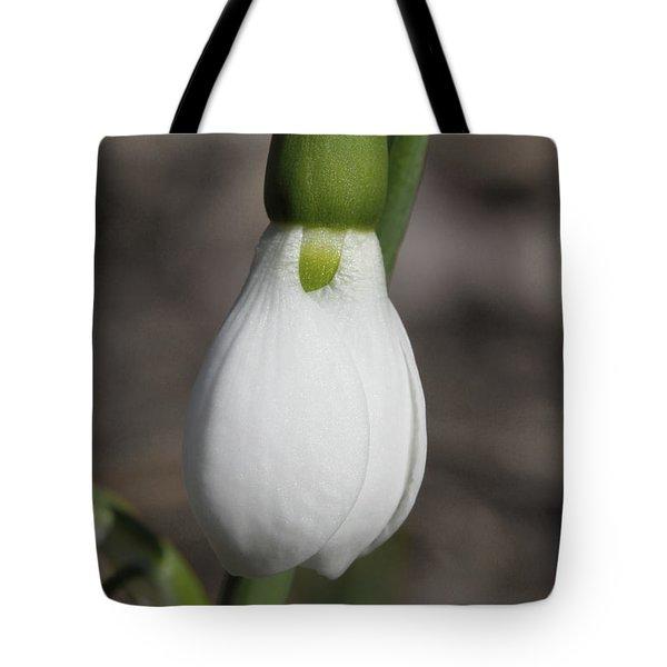 Snowdrop #2 Tote Bag