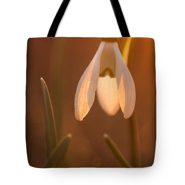 Tote Bag featuring the photograph Snowdrop by Davorin Mance