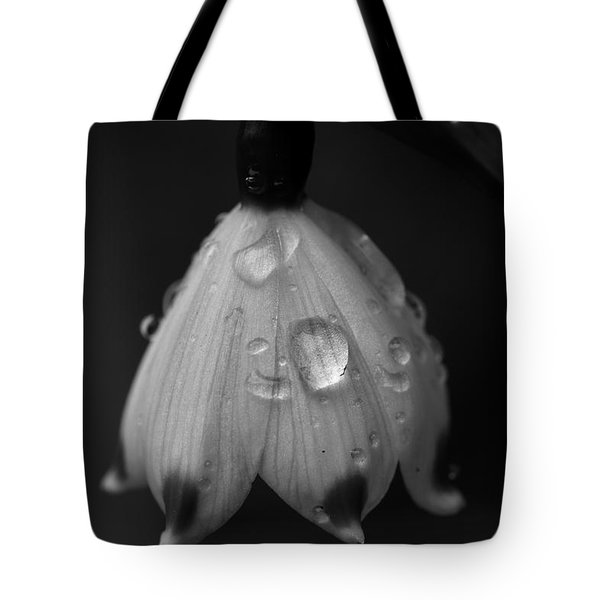 Tote Bag featuring the photograph Snowdrop by Keith Elliott