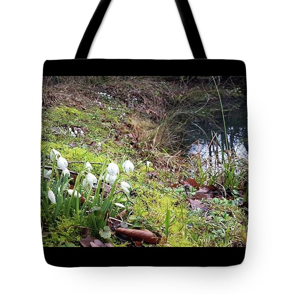 Watching The Water Tote Bag