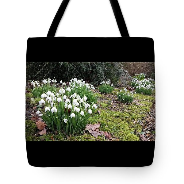 Snowdrop Parade Tote Bag