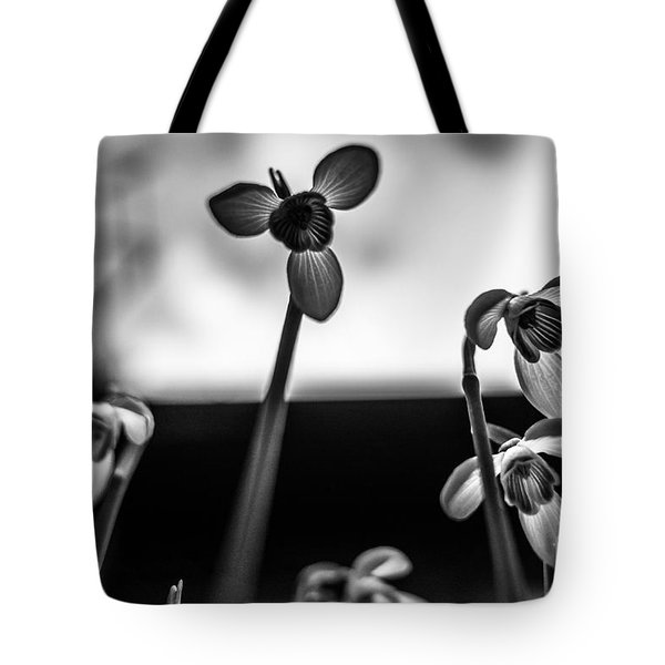 Snowdrops Standing Tall Tote Bag