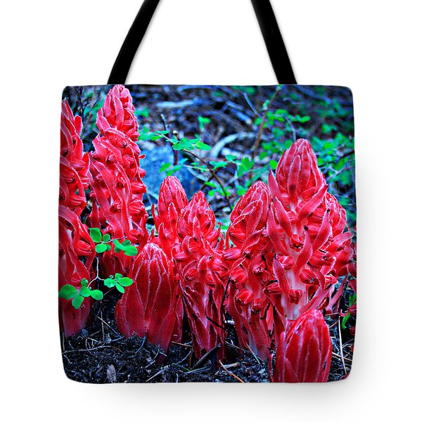 Tote Bag featuring the photograph Snowflower Pow Wow by Sean Sarsfield