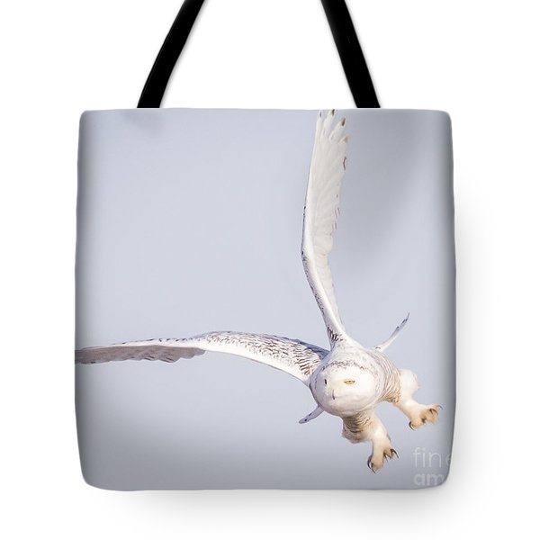 Snowy Owl Flying Dirty Tote Bag