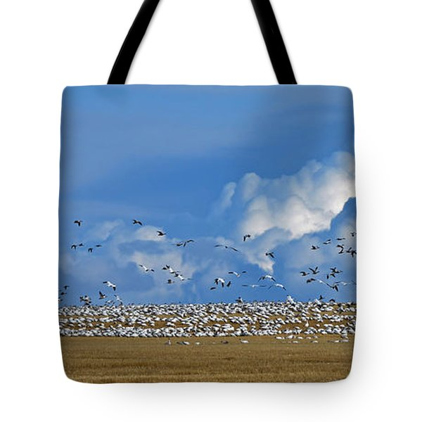 Snows And Storms Tote Bag