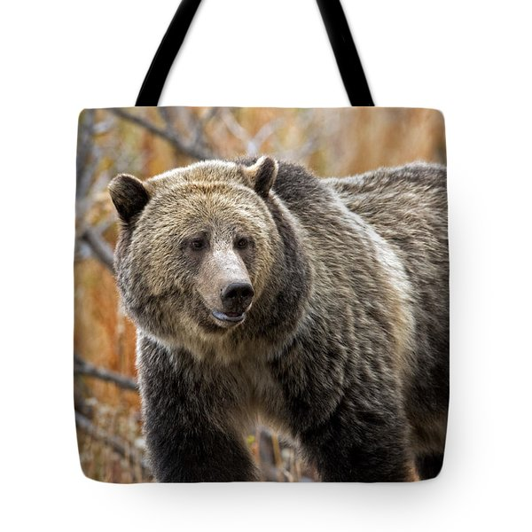 Snow's Mama Bear Tote Bag