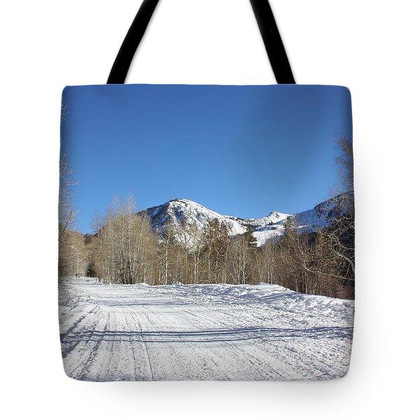 Snowy Aspen Tote Bag by Kim Hojnacki
