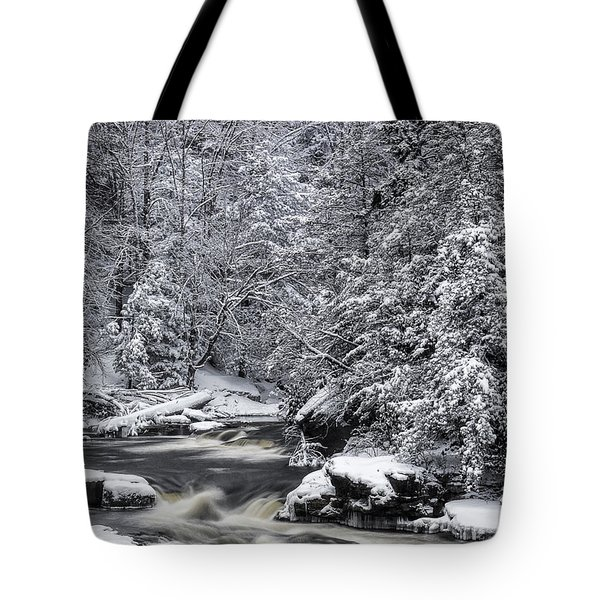 Snowy Blackwater Tote Bag