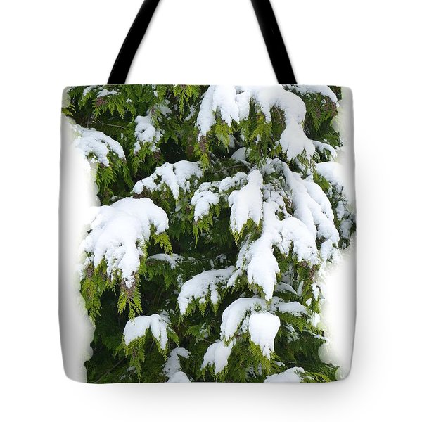 Tote Bag featuring the photograph Snowy Cedar Boughs by Will Borden