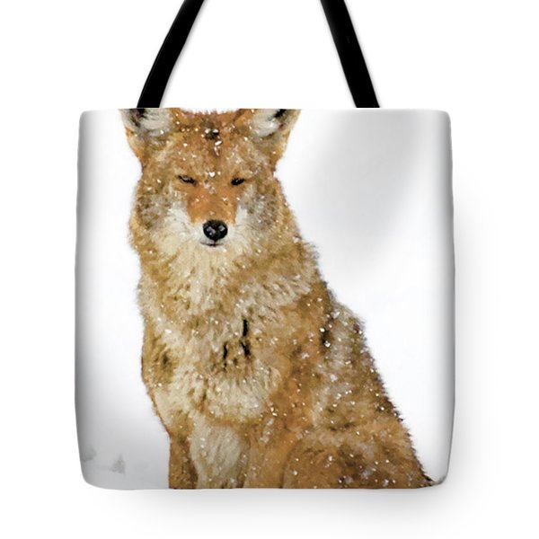 Snowy Coyote Tote Bag