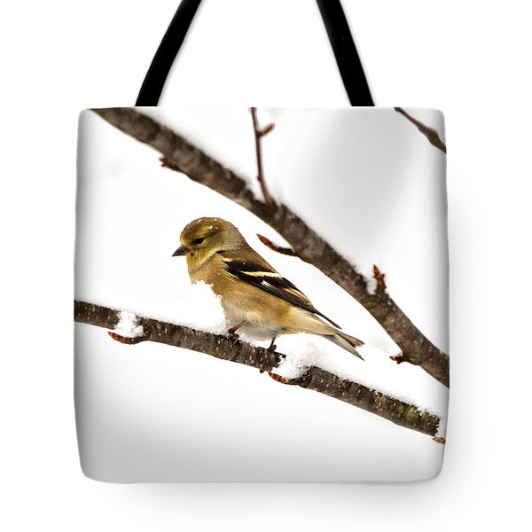 Snowy Day Goldfinch Tote Bag