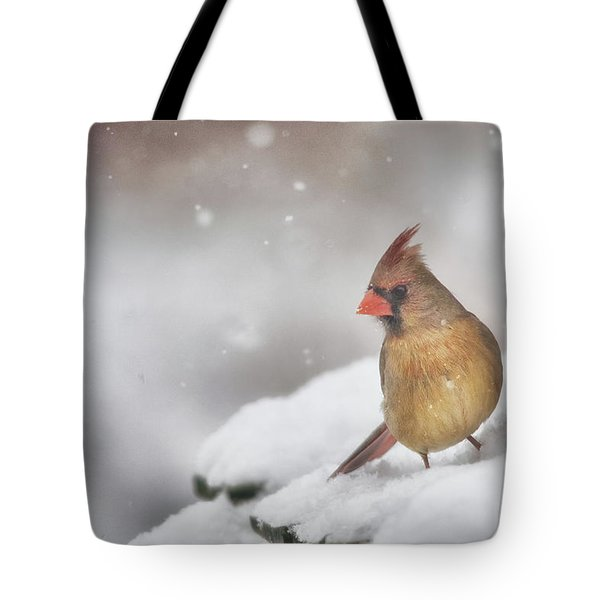 Snowy Day Lady  Tote Bag