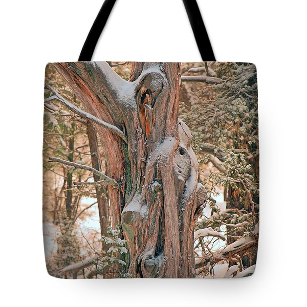 Snowy Dead Tree Tote Bag by Donna Greene