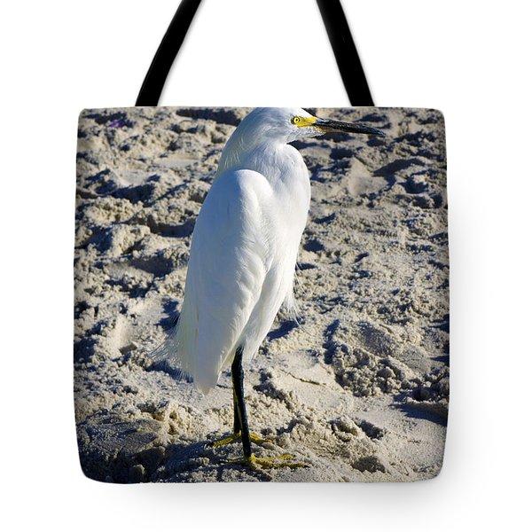 Snowy Egret At Naples, Fl Beach Tote Bag