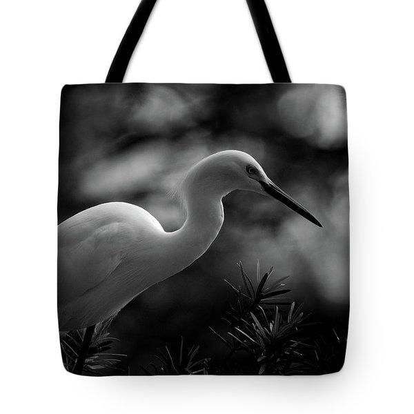 Snowy Egret Bw Tote Bag by Travis Burgess