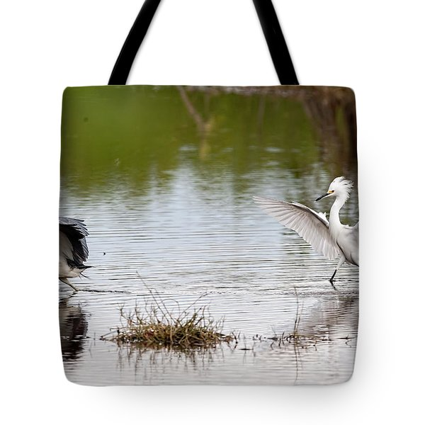 Snowy Egret Chasing Other Bird Out Of Feeding Area Tote Bag