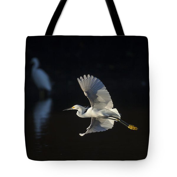Snowy Egret In Flight In The Morning Light Tote Bag