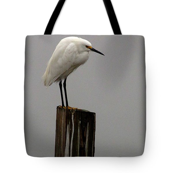 Snowy Egret In The Fog  Tote Bag
