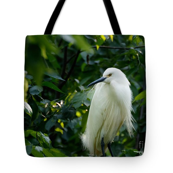 Snowy Egret In The Trees Tote Bag