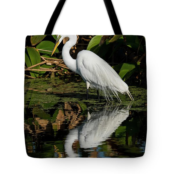 Tote Bag featuring the photograph Snowy Egret by Michael D Miller