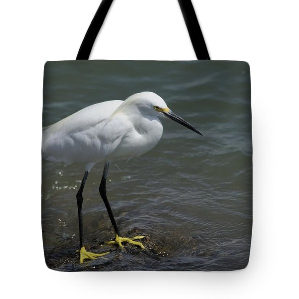 Snowy Egret On Rock Tote Bag