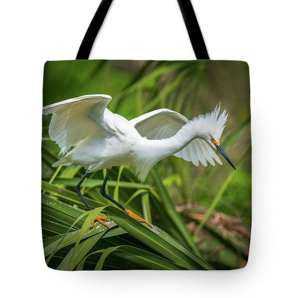 Snowy Egret St Augustine Florida Wildlife Nature Photography Tote Bag