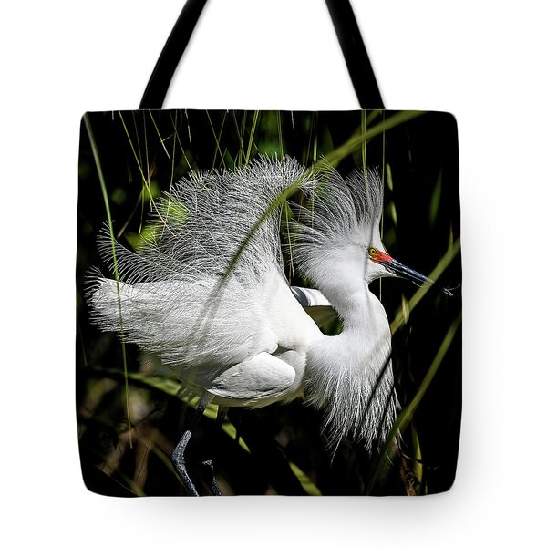 Tote Bag featuring the photograph Snowy Egret by Steven Sparks