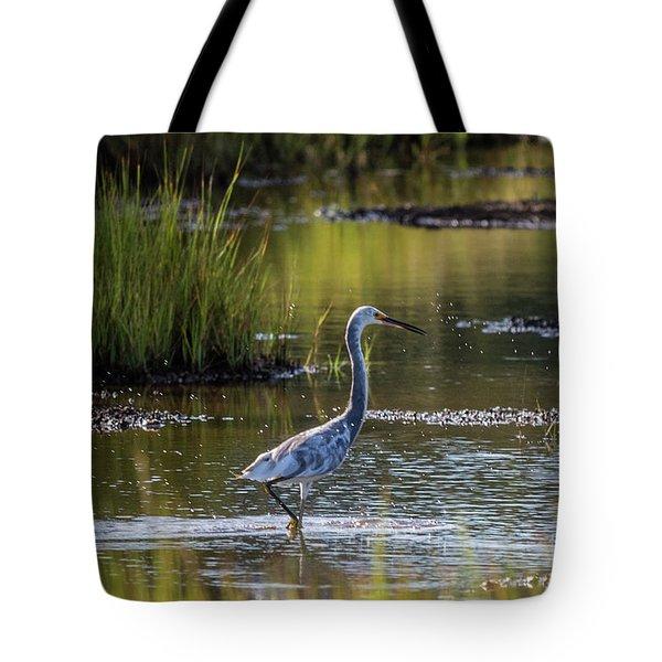 Snowy Egret X Tricolor Heron Tote Bag by David Bishop