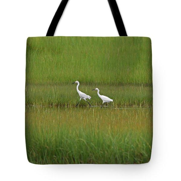 Snowy Egrets Tote Bag