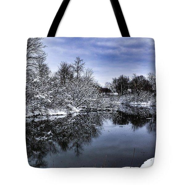 Snowy Ellicott Creek Tote Bag