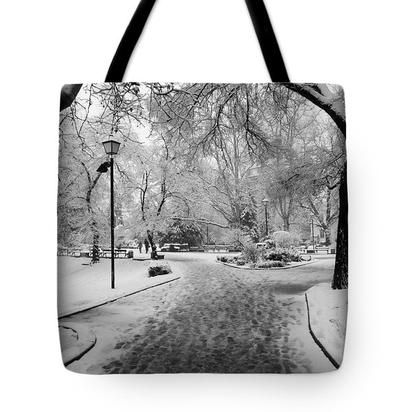 Snowy Entrance To The Park Tote Bag by Rae Tucker