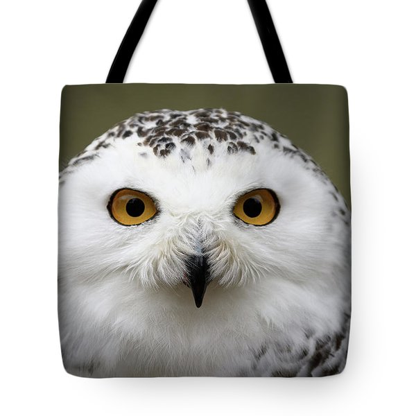 Snowy Eyes Tote Bag
