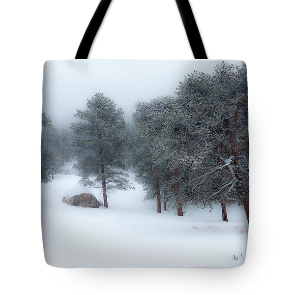 Snowy Morning - 0622 Tote Bag