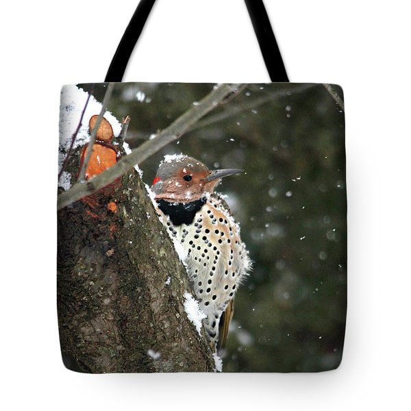 Snowy Northern Flicker Tote Bag by Trina Ansel