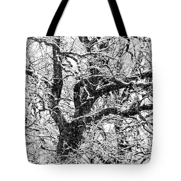 Snowy Oak Tote Bag