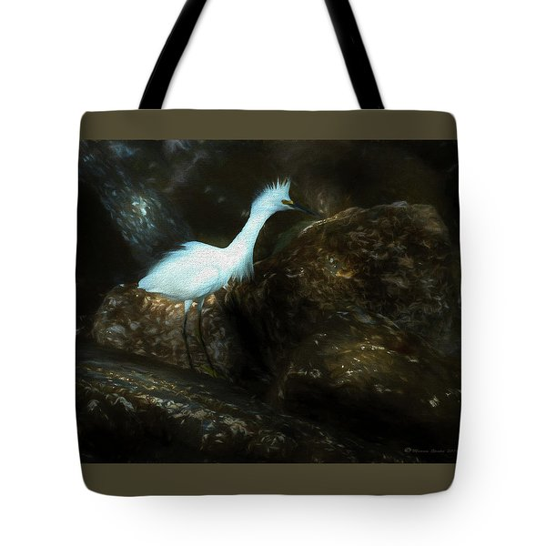Snowy On The Rocks Tote Bag