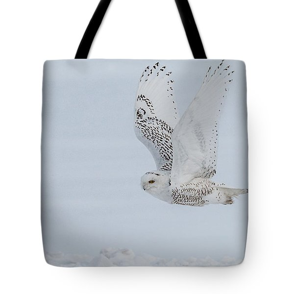 Tote Bag featuring the photograph Snowy Owl #3/3 by Patti Deters