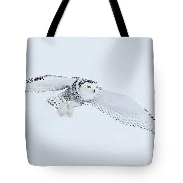 Snowy Owl In Flight Tote Bag