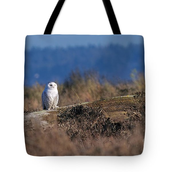 Tote Bag featuring the photograph Snowy Owl On Log by Sharon Talson