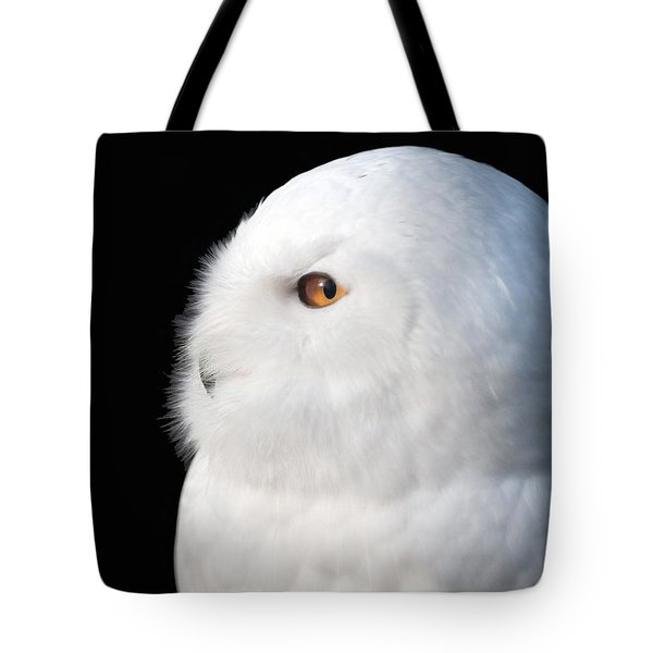 Snowy Owl Portrait Tote Bag