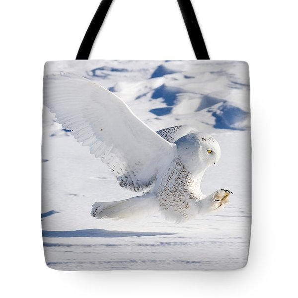 Snowy Owl Pouncing Tote Bag