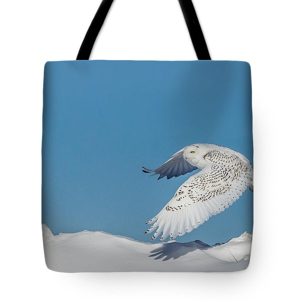 Tote Bag featuring the photograph Snowy Owl - Taking Flighty by Dan Traun