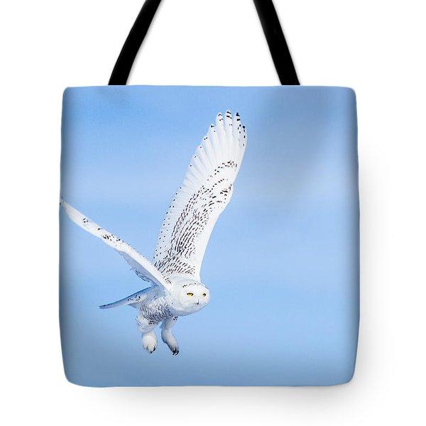 Snowy Owls Soaring Tote Bag