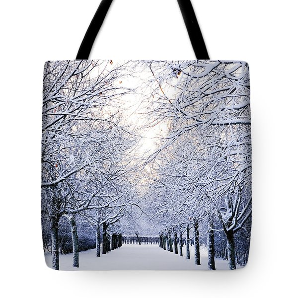 Snowy Pathway Tote Bag