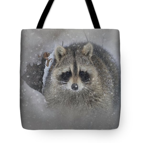 Tote Bag featuring the photograph Snowy Raccoon by Teresa Wilson