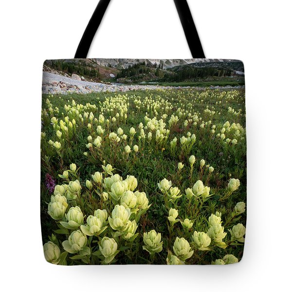 Snowy Range Paintbrush Tote Bag